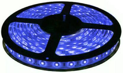Imagem de C465 - Fita 60 SMD 5050/Metro AZUL IP65 HIGH POWER 12V